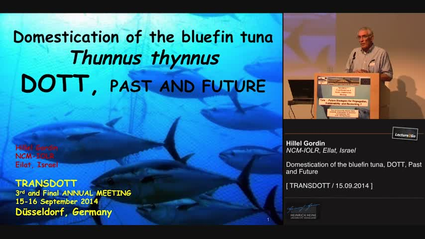 Domestication of the bluefin tuna, DOTT, Past and Future