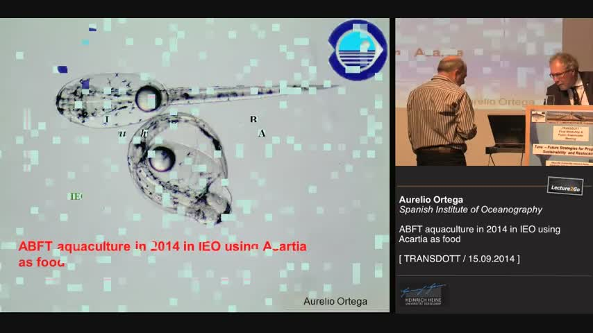ABFT aquaculture in 2014 in IEO using Acartia as food